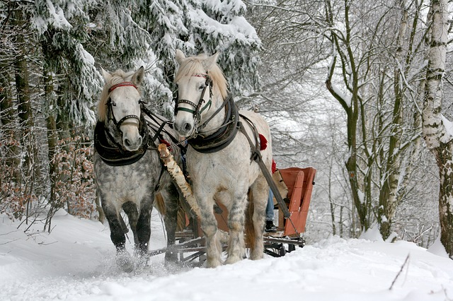 Get Creative This Time Of The Year Sleigh Ride