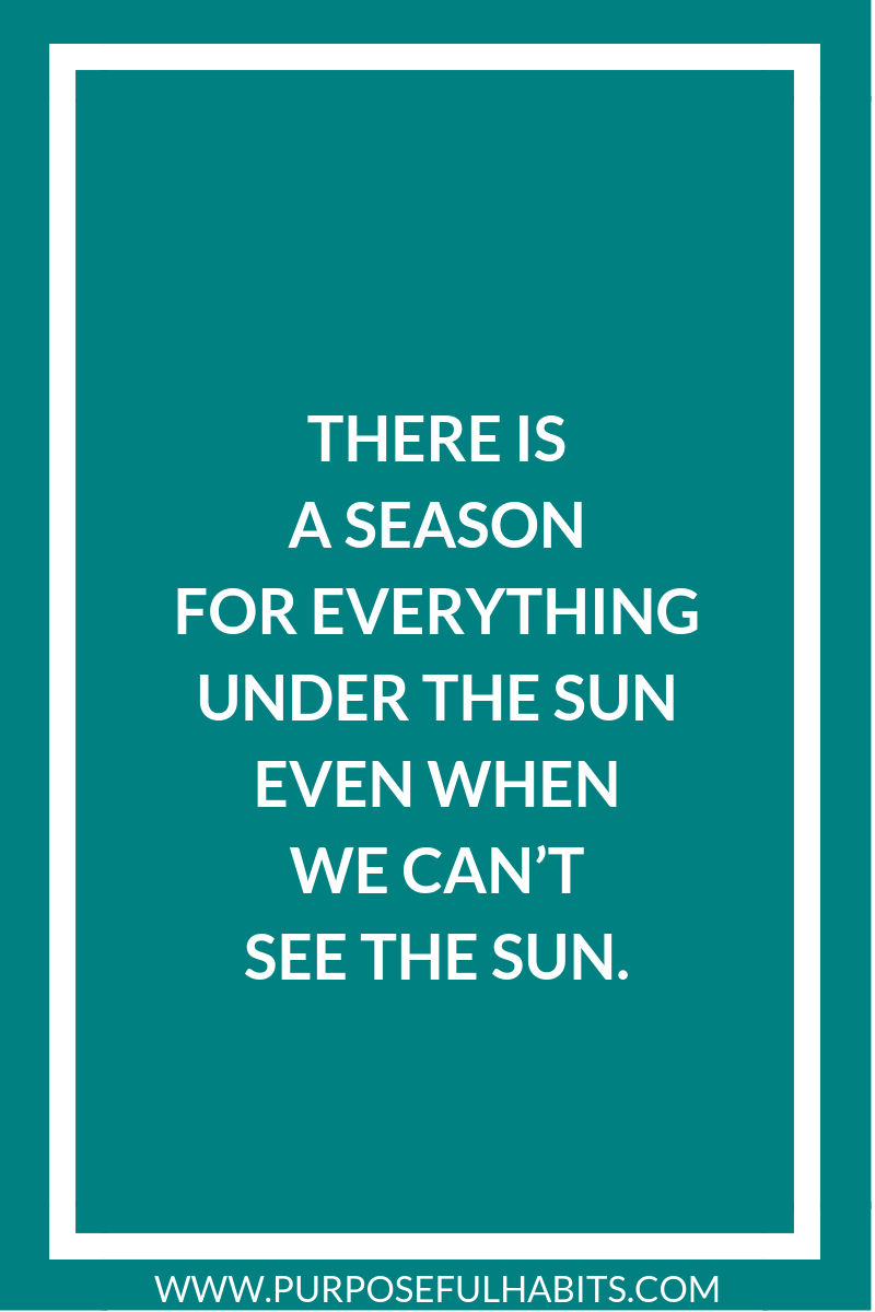 There is a season for everything under the sun—even when we can't see the sun.