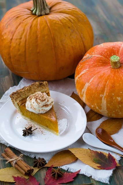 How to survive Thanksgiving with your family makig pumpkin pie a busy bee's life