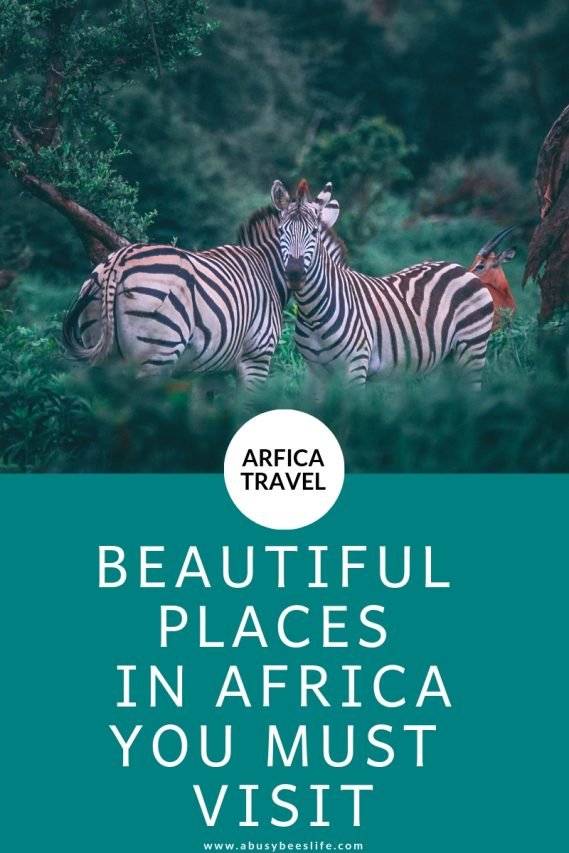 Africa's development has been hidden for so long! Want to see how beautiful this continent is? Read more about the amazing continent Africa and all it has to offer. #travel #destinations #holiday #Africa #travelguide